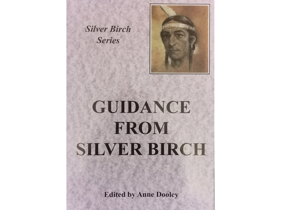 Guidance from Silver Birch