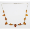 Amber Necklace (102) 01