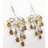 Amber Earrings (107) 04